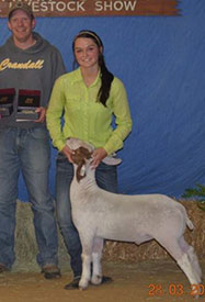 Book Show Goats & Hair Sheep | Winners
